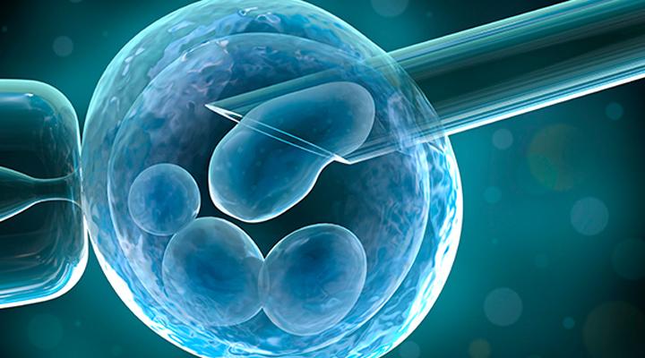 Empregada que engravidou por inseminação durante aviso prévio tem estabilidade